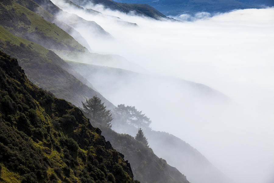 Foggy Hillside Photograph