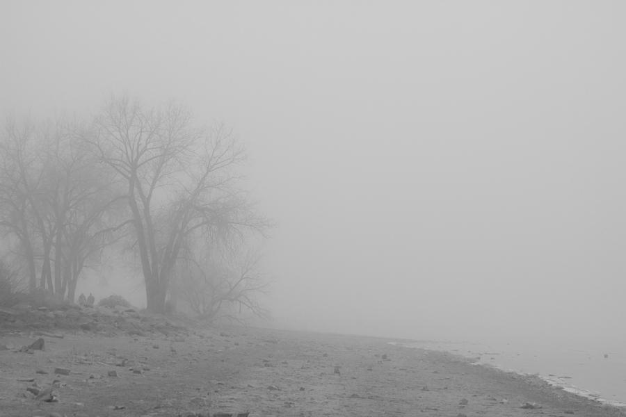 Foggy Lake Shoreline View Bw  Photograph