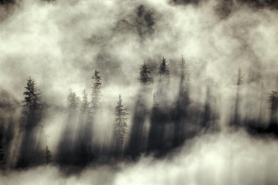 Foggy Landscape Stephens Passage Photograph