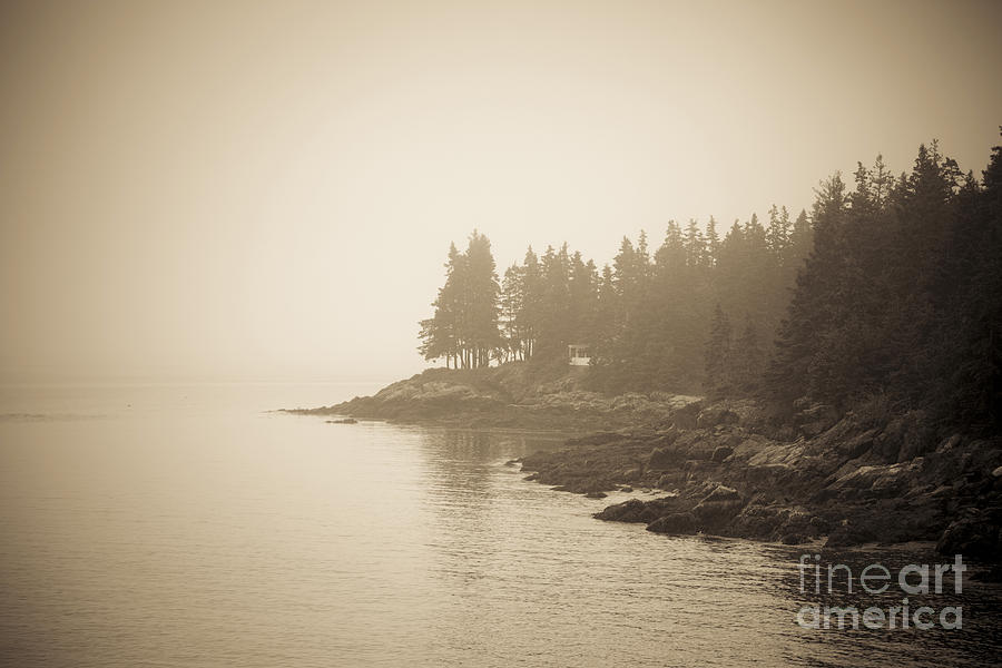 Maine Photograph - Foggy Maine Coast by Diane Diederich