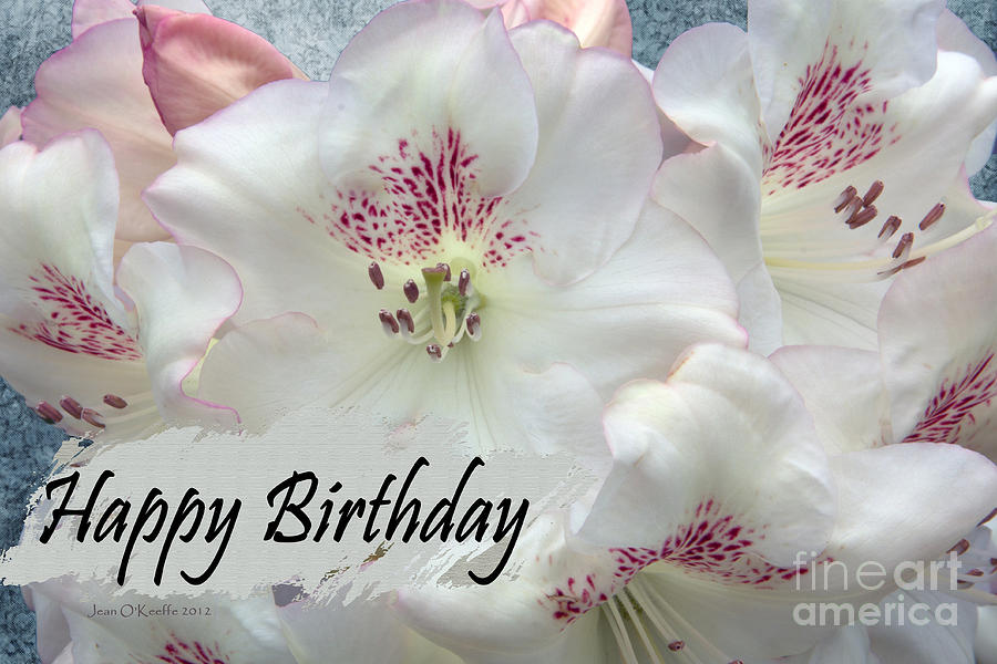 Fond Birthday Wishes Photograph  - Fond Birthday Wishes Fine Art Print
