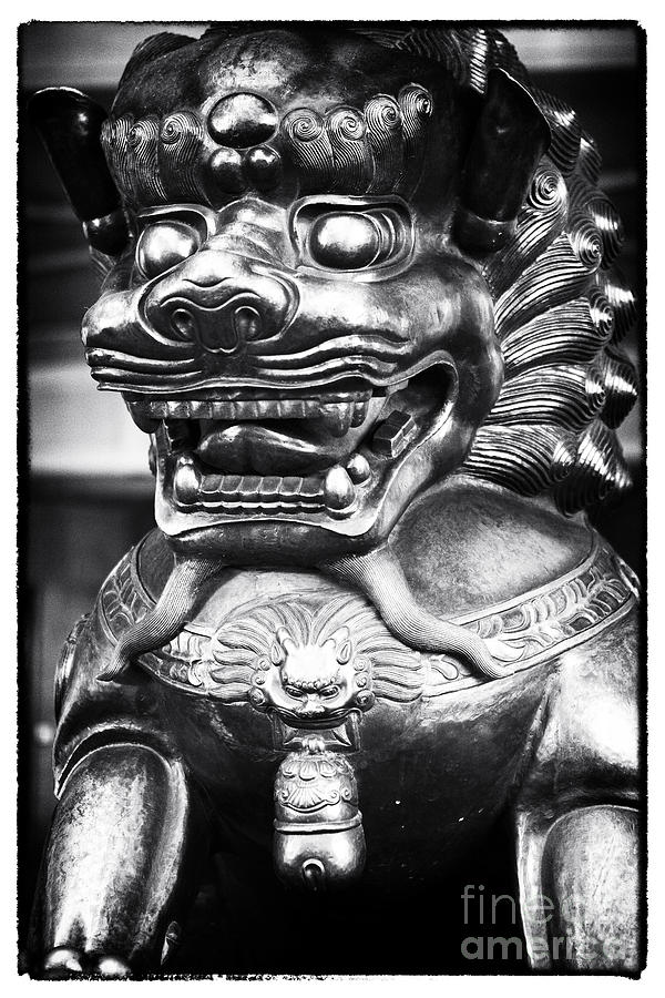 Food Dog Photograph - Foo Dog by John Rizzuto