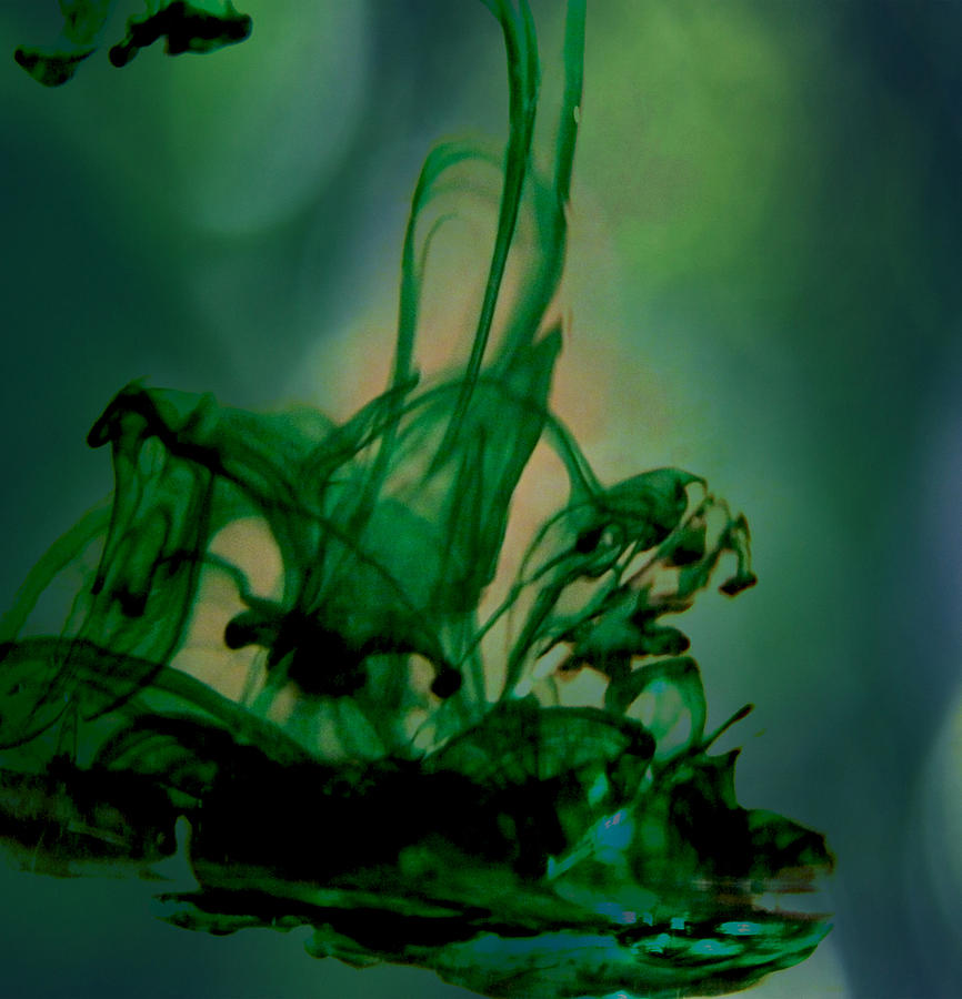 Food Coloring In Water Photograph