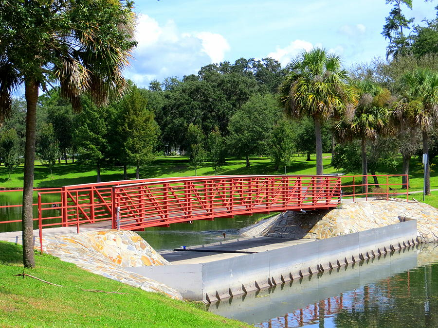 Footbridge In Tuscawilla Park Photograph