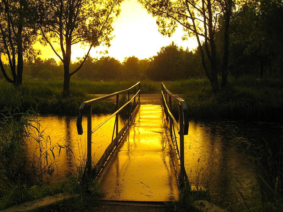 Footbridge Sunset Saint Petersburg Russia Photograph