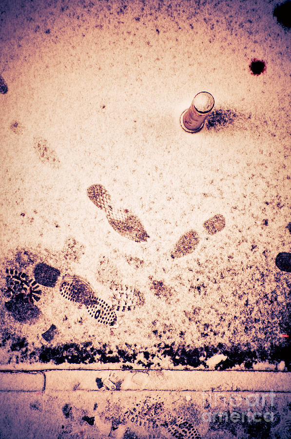 Footprints In The Snow Photograph