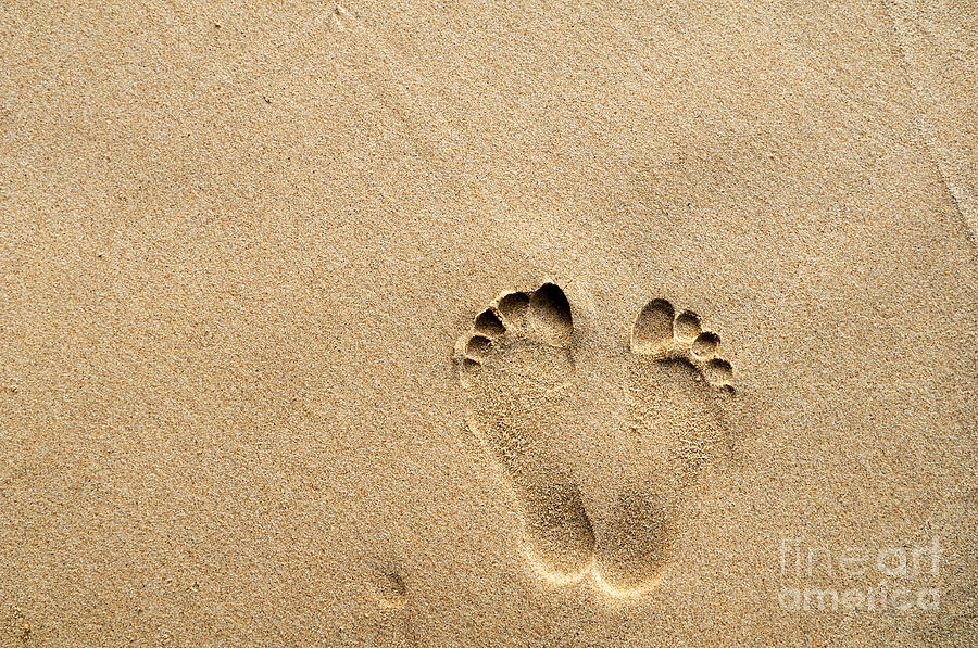 Footprints On Sandy Beach Photograph  - Footprints On Sandy Beach Fine Art Print