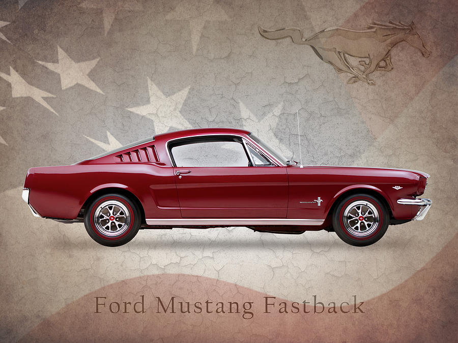 Ford Mustang Fastback 1965 Photograph