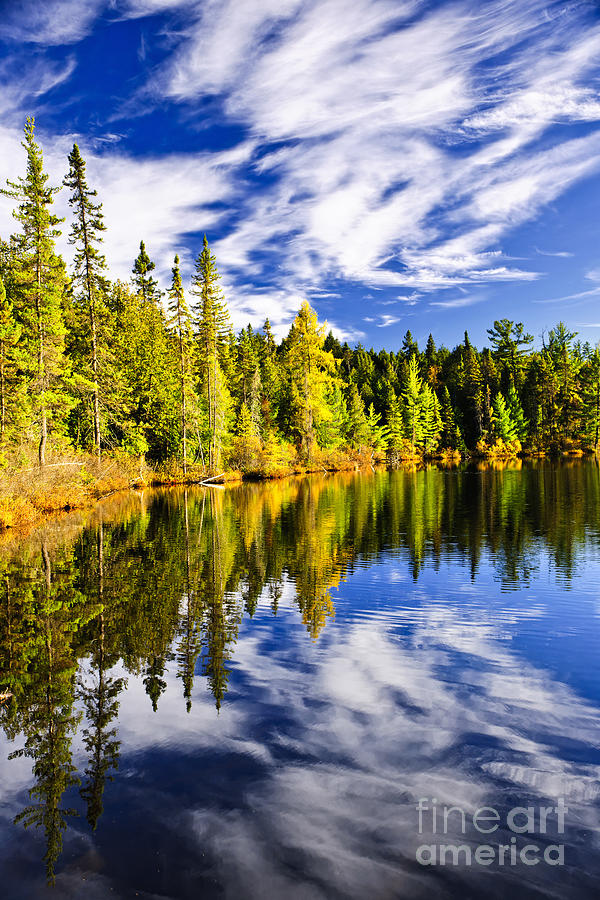 Forest And Sky Reflecting In Lake Photograph  - Forest And Sky Reflecting In Lake Fine Art Print