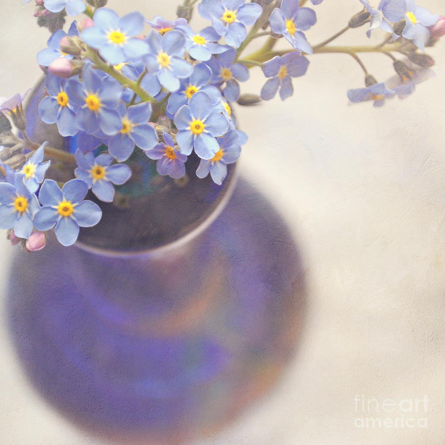 Forget Me Nots In Blue Vase Photograph