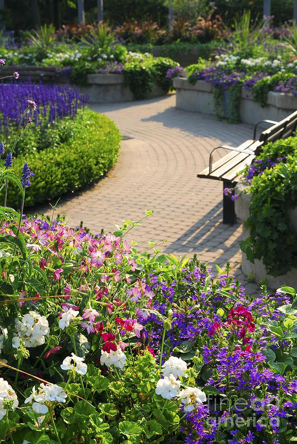 Formal Garden Photograph