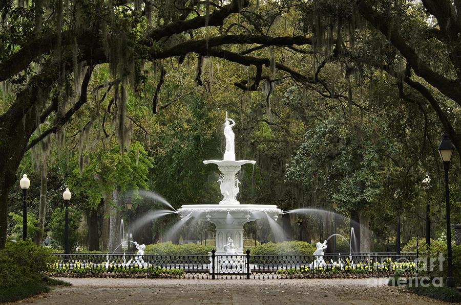 Forsyth Park Fountain - D002615 Photograph