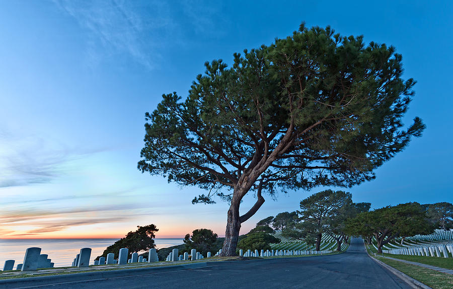 Fort Rosecrans National Cemetery Photograph  - Fort Rosecrans National Cemetery Fine Art Print