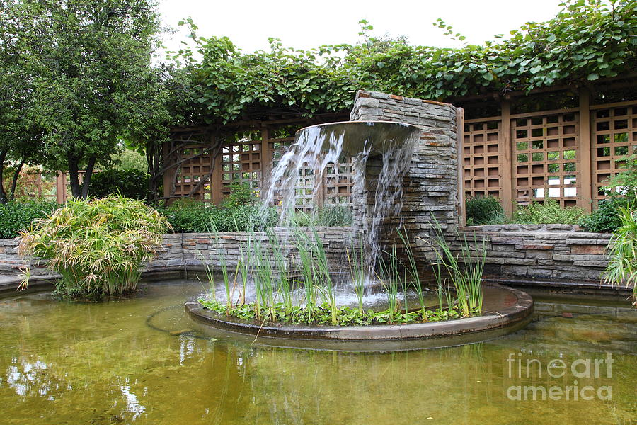 Fountain At The Historic Luther Burbank Home And Gardens