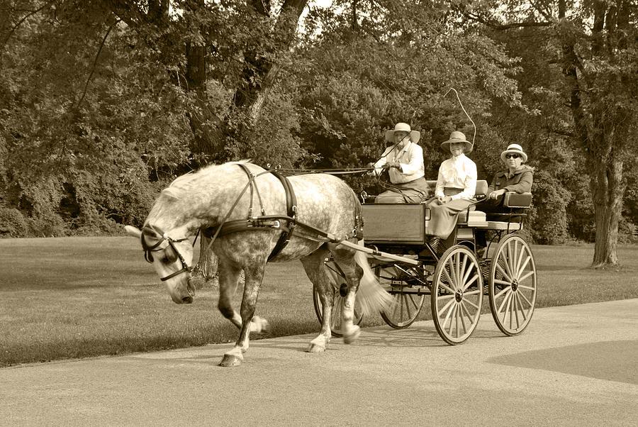Four Wheel Cart Family Photograph - Four Wheel Cart Family by Wayne Sheeler