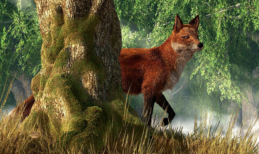 Fox In A Forest Digital Art  - Fox In A Forest Fine Art Print