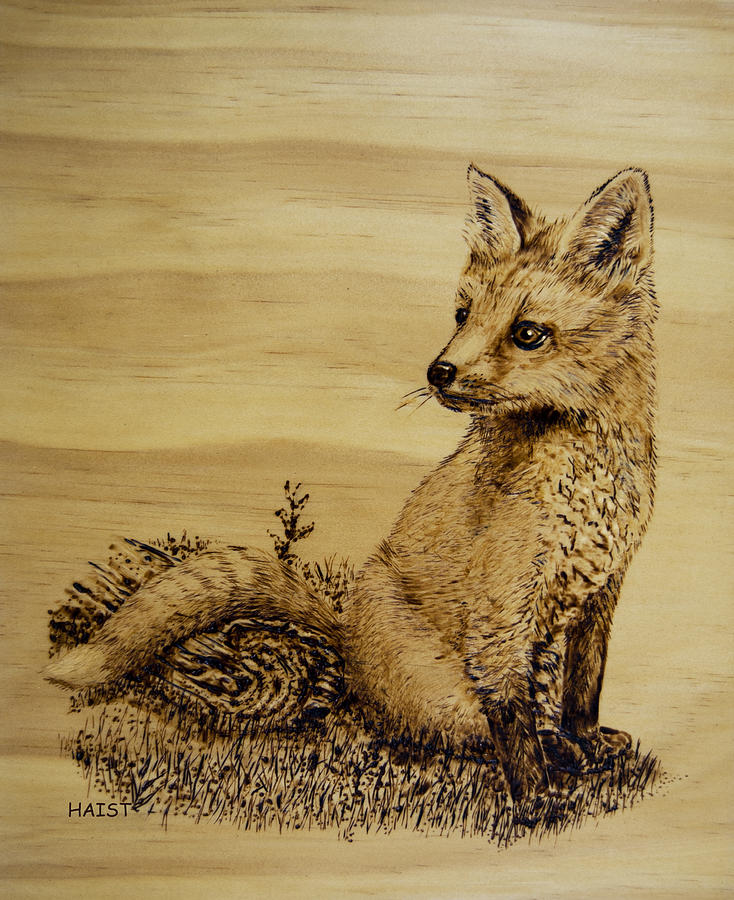Fox Pup Pyrography