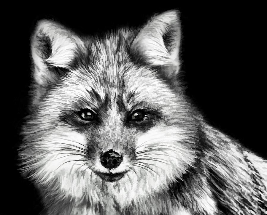 Fox Painting - Foxtrot by Steven Richardson