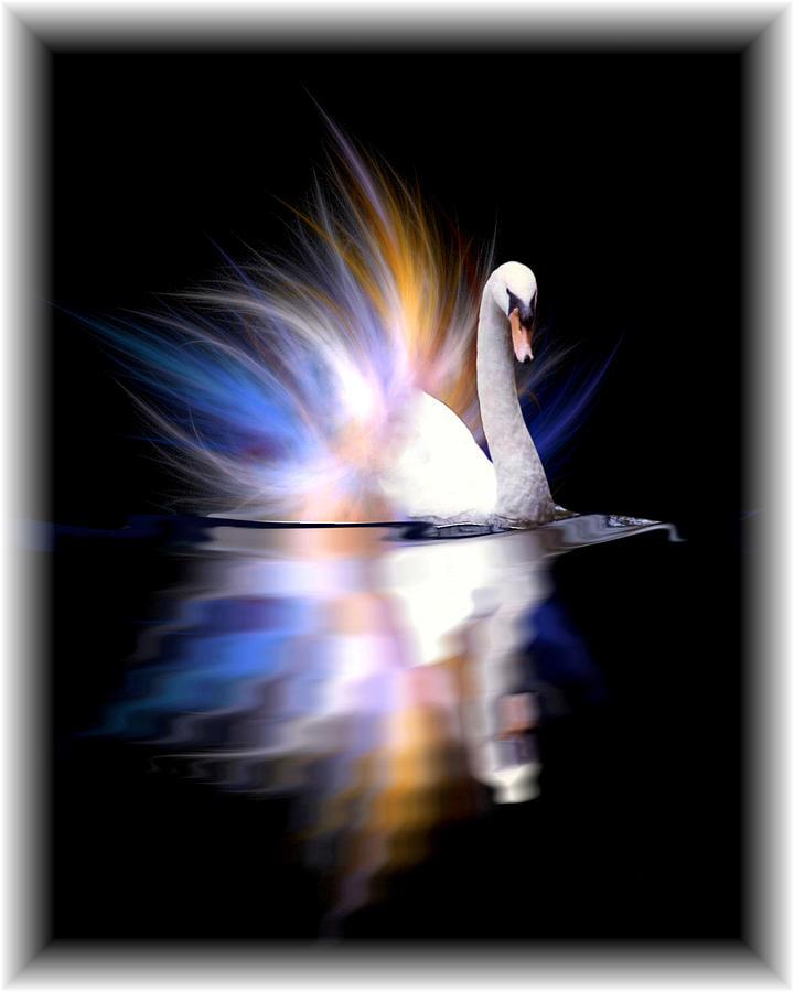 - fractaled-swan-john-kain