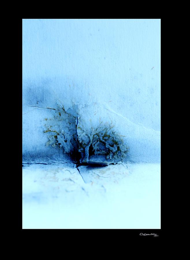 Fragile Paper Paradise 3 Photograph