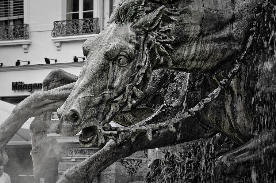 Fragment Of Bartholdi Fountain Photograph  - Fragment Of Bartholdi Fountain Fine Art Print