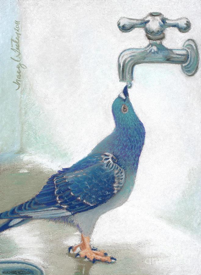 Franks Pigeon Pastel