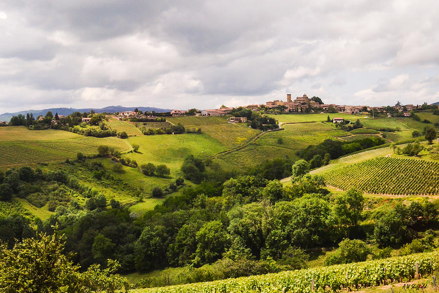 French Countryside Photograph