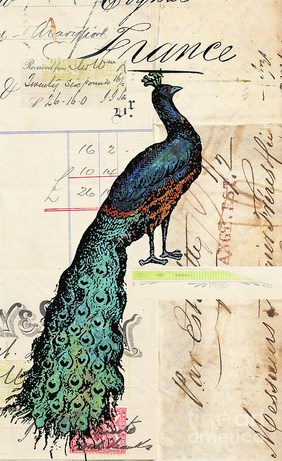 French Peacock Print Mixed Media  - French Peacock Print Fine Art Print