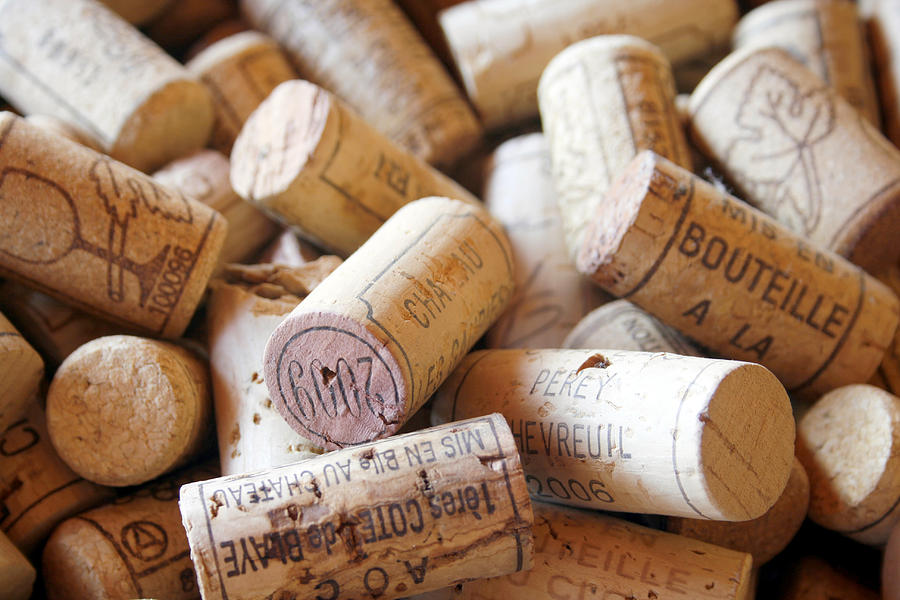 French Wine Corks Photograph  - French Wine Corks Fine Art Print