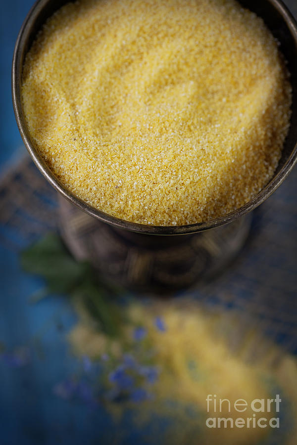 Fresh Corn Meal Photograph  - Fresh Corn Meal Fine Art Print