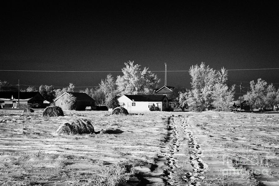Fresh Photograph - fresh footprints crossing deep snow in field towards small rural village of Forget Saskatchewan Cana by Joe Fox