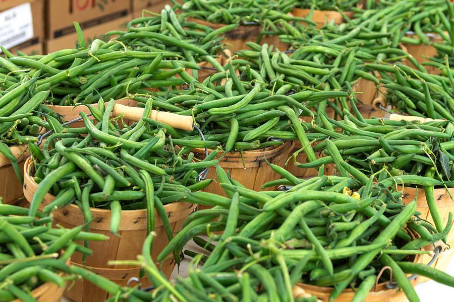 Fresh Green Beans In Baskets Photograph