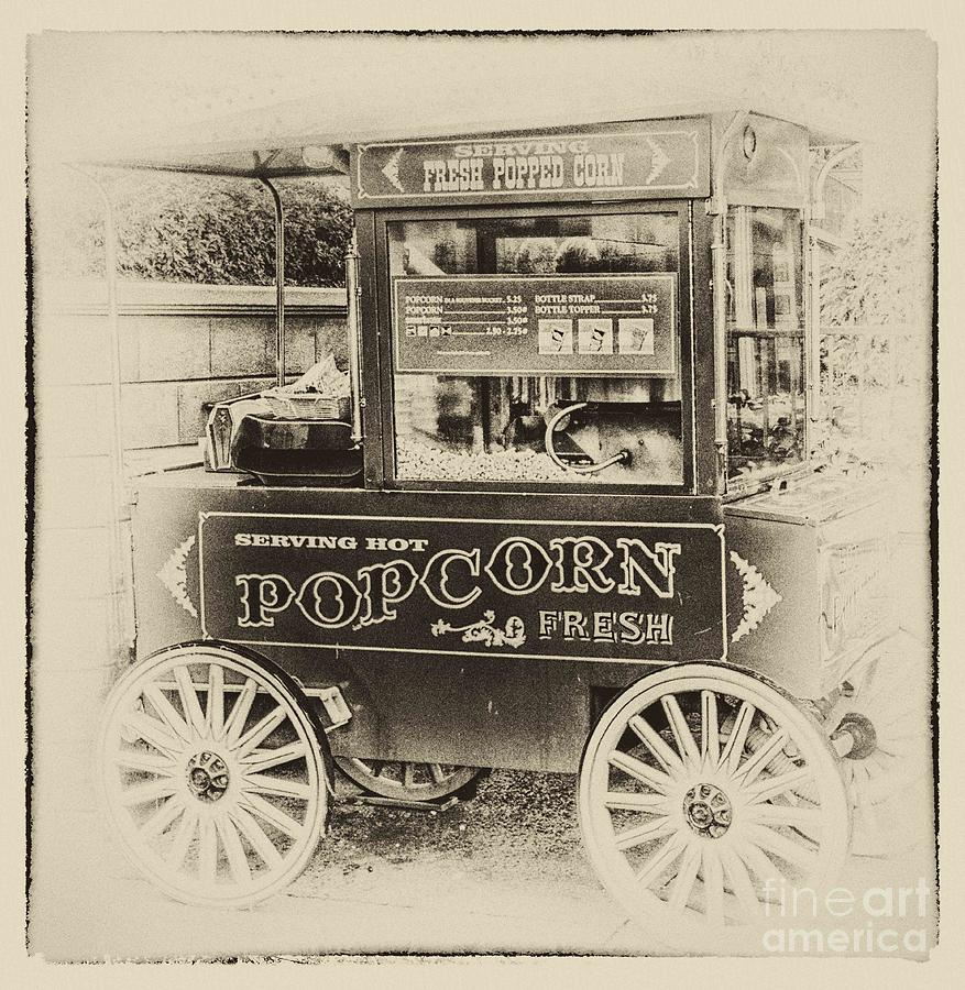 Fresh Popcorn Photograph