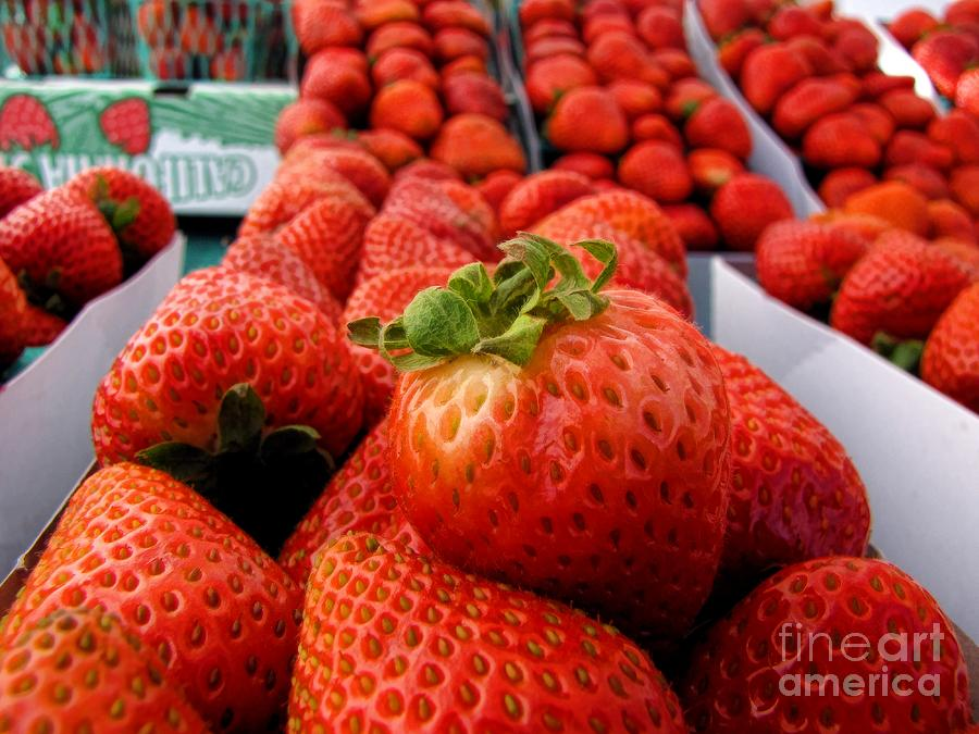 Fresh Strawberries Photograph  - Fresh Strawberries Fine Art Print