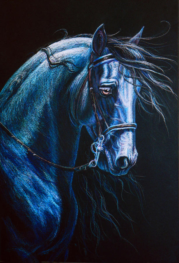 Friesian Stallion Painting  - Friesian Stallion Fine Art Print