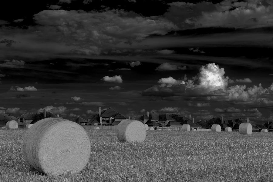 Frisco Dream Photograph