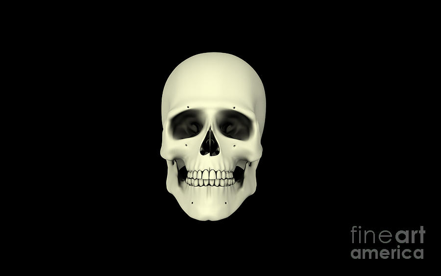 Front View Of Human Skull Digital Art