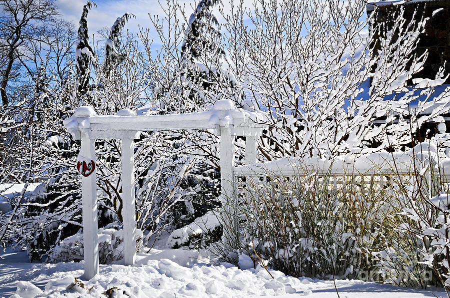 Front Yard Of A House In Winter Photograph