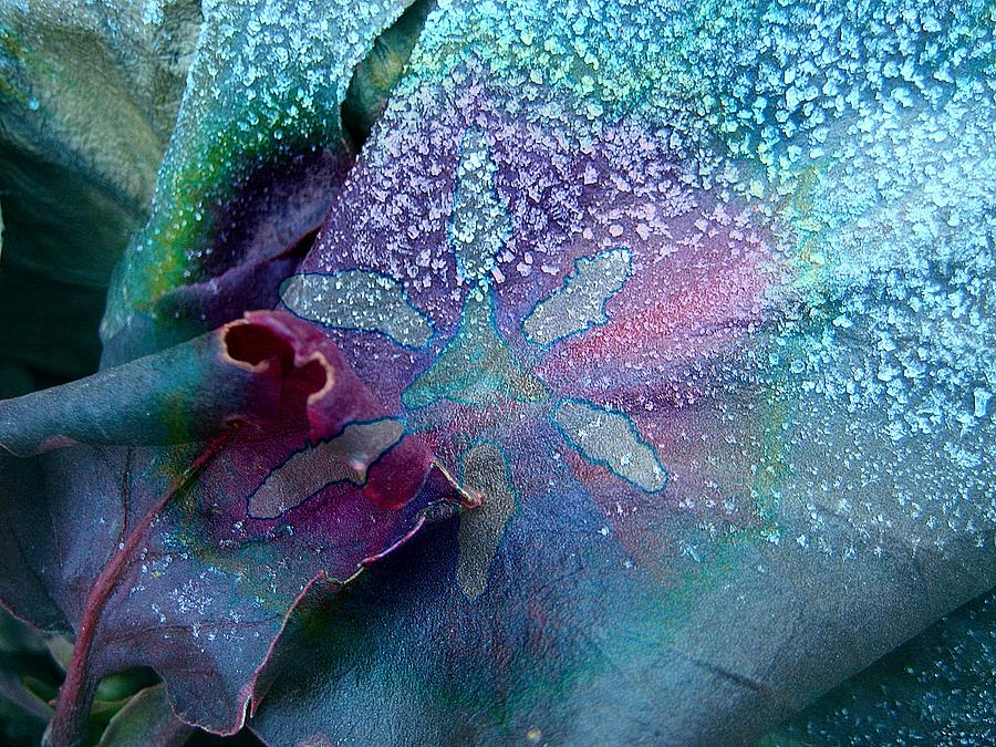 Abstract Expressionism Photograph - Frost On Turquoise by Shirley Sirois