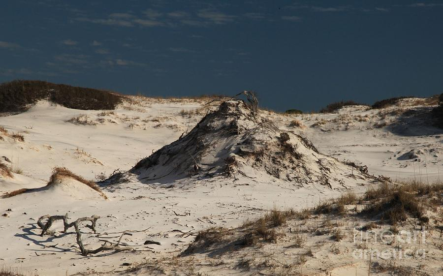 Frosty White Dunes Photograph