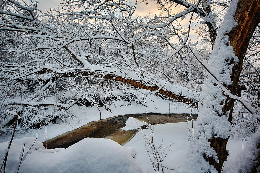 Frozen Creek Photograph