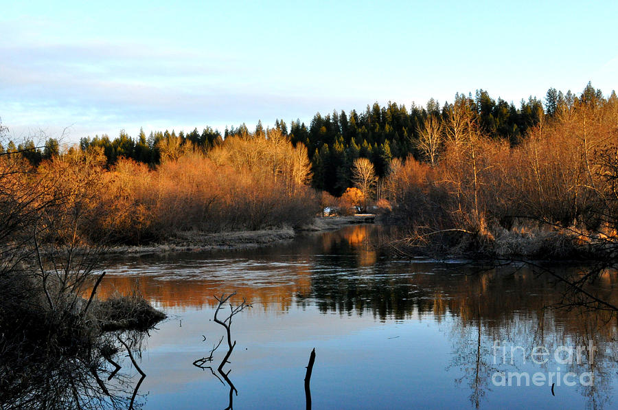Frozen Reflections Photograph  - Frozen Reflections Fine Art Print