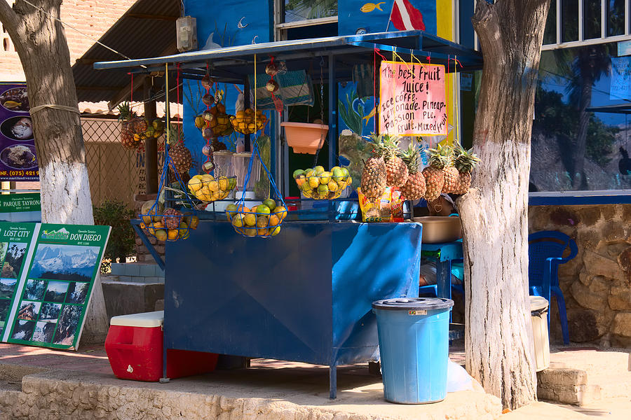 Fruit Juice Stand Photograph  - Fruit Juice Stand Fine Art Print