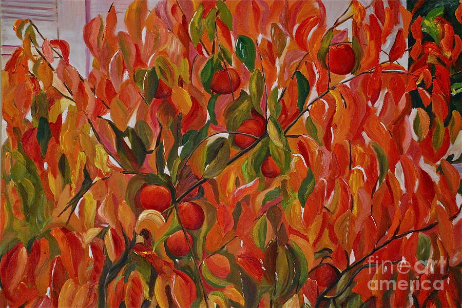 Fuju Persimmon Tree Painting  - Fuju Persimmon Tree Fine Art Print