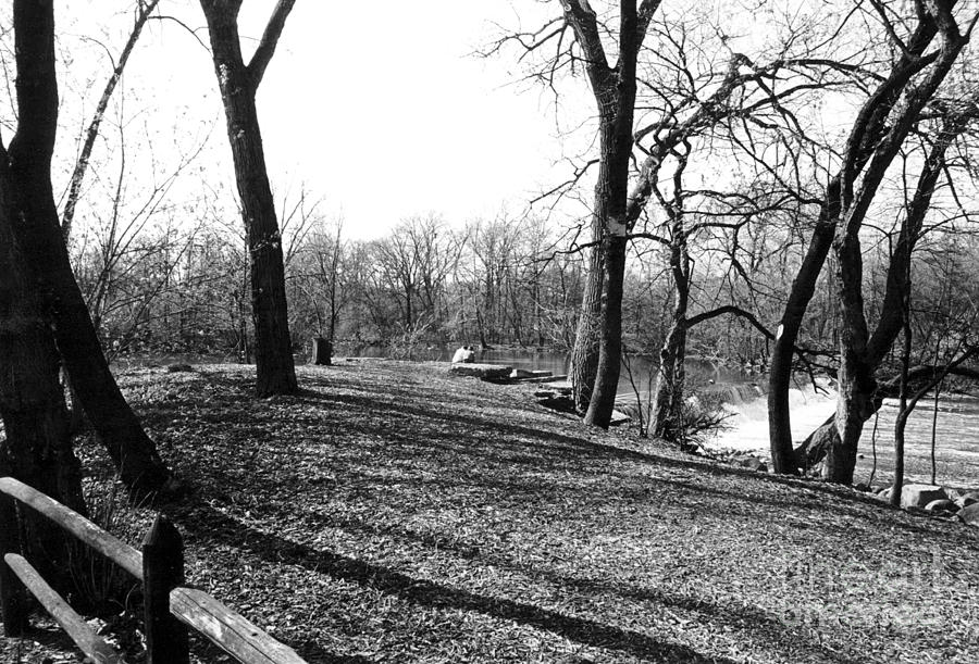 Fullersburg Woods Landscape In Black And White Photograph