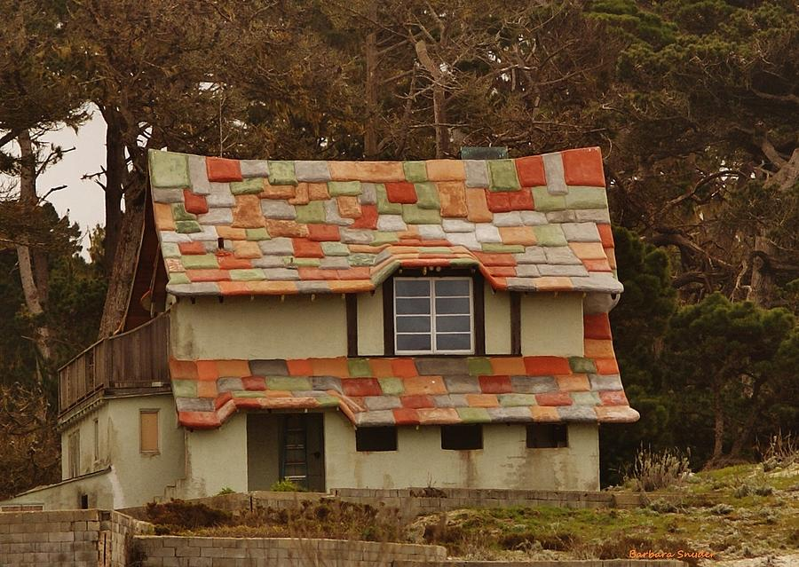 Funky house on 17 mile drive by barbara snyder for Funky house artists