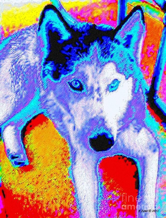 Funky Siberian Husky Digital Art
