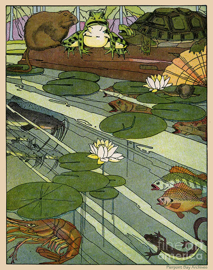 Garada Clark Riley Living Pond With Frog Turtle Lily Pads Fish Crawfish Mouse Snail Lizard Etc Digital Art  - Garada Clark Riley Living Pond With Frog Turtle Lily Pads Fish Crawfish Mouse Snail Lizard Etc Fine Art Print