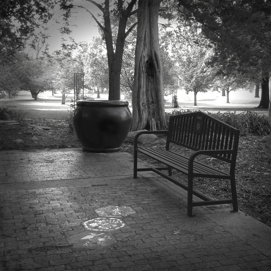 Garden Bench Black And White Photograph Photograph By Ann