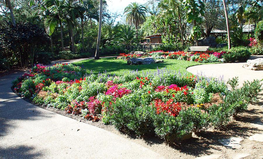 Garden Park Photograph